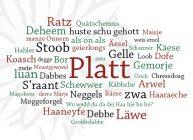 Dialekt im Hinterland e. V.